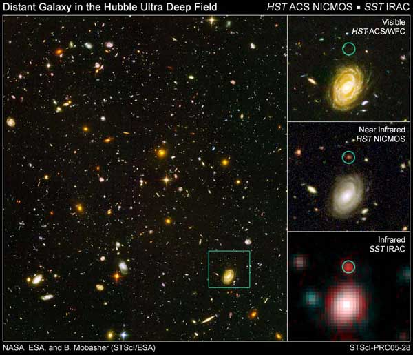 Two of NASAs Great Observatories, the Spitzer and Hubble Space Telescopes, have teamed up to weigh the stars in several distant galaxies. One of these galaxies, among the most distant ever seen, appears to be unusually massive and mature for its place in the young universe. (Courtesy Space Telescope Science Institute and Spitzer Space Telescope.)